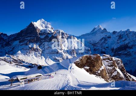 Slope, with restaurant First, Wetterhorn in background, First, Grindelwald, Bernese Oberland, Canton of Bern, Switzerland - Stock Photo