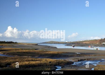 View of Cardigan Island across River Teifi estuary, St Dogmaels, Pembrokeshire, Wales, United Kingdom - Stock Photo