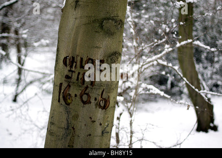 Lovers names engraved on a tree in Queen's Wood, Highgate - Stock Photo