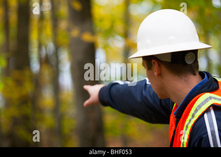 Engineer pointing towards a forest - Stock Photo