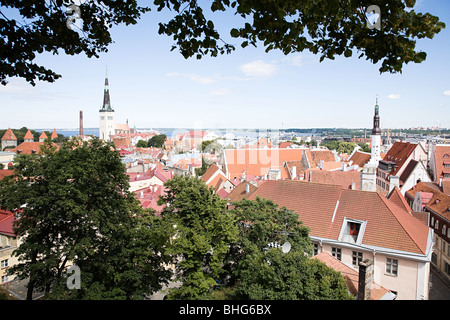 Elevated view of tallin - Stock Photo