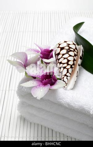Handtuecher mit Orchidee und Muschel - Stock Photo