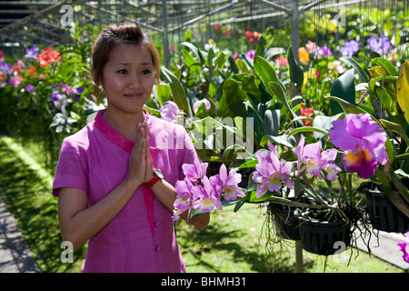 Greenhouse plants & flowers. Asian Woman in traditional dress, customary wai greeting visitors with the Wai in Bai - Stock Photo