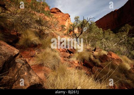 Kings Canyon, part of the Watarrka National Park , Northern Territory, Australia - Stock Photo