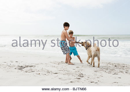 Brothers and dog by the sea - Stock Photo