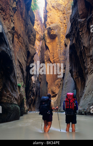 Hiking along the North Fork Virgin River in the Zion Narrows of Zion National Park, Utah. - Stock Photo