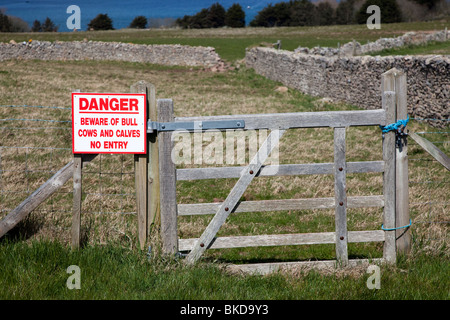 Danger Beware of bull cows and calves no entry sign on gate Caldey Island Wales UK - Stock Photo
