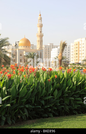 flowers in front of the Zawawi mosque at Al-Khuwair, Muscat, Sultanate of Oman. Photo by Willy Matheisl - Stock Photo