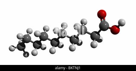 capric acid, decanoic acid (colorcode: black=carbon, white=hydrogen, red=oxygen) - Stock Photo