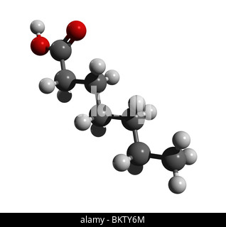 Heptanoic acid (colorcode: black=carbon, white=hydrogen, red=oxygen) - Stock Photo