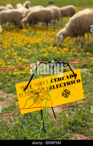 Electric fence. L'Espluga Calba (Lleida) Spain. - Stock Photo