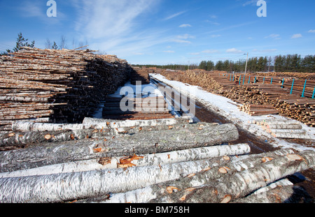 View of railroad depot where logs are loaded to cargo trains , Finland - Stock Photo