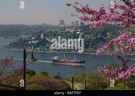 Rumeli Hisari,Thracian Castle,1452 fortress,judas-tree,overlooking Bosphorus, Istanbul - Stock Photo