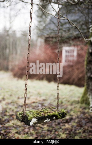 Scandinavian Peninsula, Sweden, Skane, View of empty swing in garden - Stock Photo