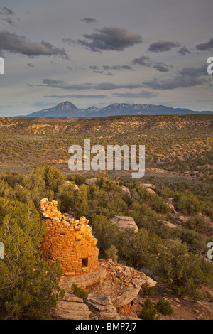 Ancient tower at Painted Hand Pueblo, Canyons of the Ancients National Monument, Sleeping Ute Mountain in back, - Stock Photo