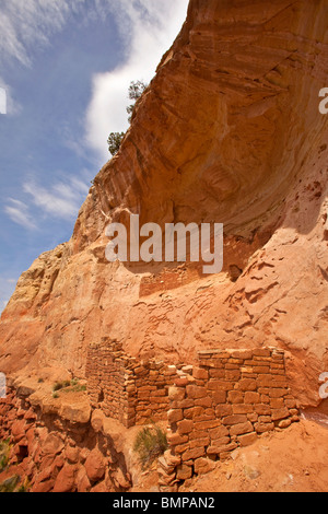 Ancient Puebloan cliff dwelling along Sand Canyon Trail, Canyons of the Ancients National Monument, near Cortez, - Stock Photo