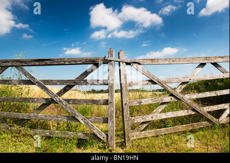 Old five bar wooden gates in front of a field of barley in the english countryside. Oxfordshire, England - Stock Photo
