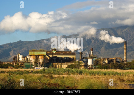 Elk284-4075 Hawaii, Maui, Pu'unene Sugar mill with sugar cane field in foreground - Stock Photo