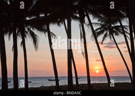 Tropical sunset with palm trees and view towards sea and fishing boats Mui Ne Vietnam - Stock Photo