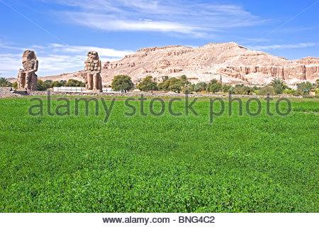 The colossi of Memnon are two massive stone statues of pharaon Amenhotep III. Luxor,Egypt - Stock Photo