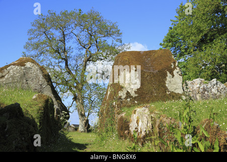 Grange Stone Circle in County Limerick, Rep. of Ireland. - Stock Photo