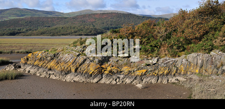 Panoramic photograph of low tide on the Mawddach estuary east of Barmouth, with lichen covered rocks in the foreground - Stock Photo