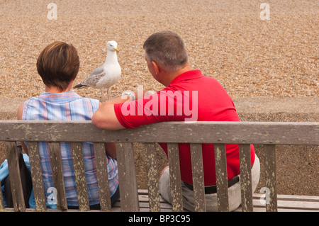 A couple sit on a seaside bench with a seagull after their food in Aldeburgh , Suffolk , England , Great Britain - Stock Photo
