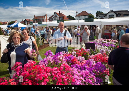 UK, England, Merseyside, Southport Flower Show, visitors at nursery stall selling colourful stocks in flower - Stock Photo