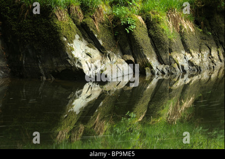 Clear reflections in the River Teifi near Cenarth, Carmarthenshire, Wales. - Stock Photo