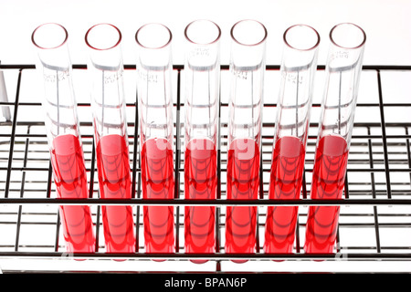 Chemicals in test-tubes. Liquid chemicals in a chemical laboratory. - Stock Photo