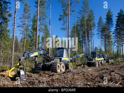 Ponsse Buffalo forwarder and Beaver forest harvester at clear-cutting area , Finland - Stock Photo