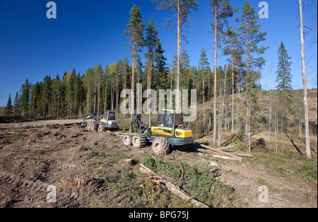 Ponsse Buffalo forwarder and Buffalo forest harvester at clear-cutting area , Finland - Stock Photo
