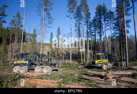 Ponsse Buffalo forest harvester and forwarders at clear-cutting area , Finland - Stock Photo