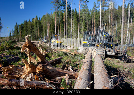Ponsse Buffalo forwarder forestry machine at clear-cutting area , Finland - Stock Photo