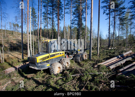 Ponsse Buffalo forwarder forestry vehicle at clear-cutting area , Finland - Stock Photo