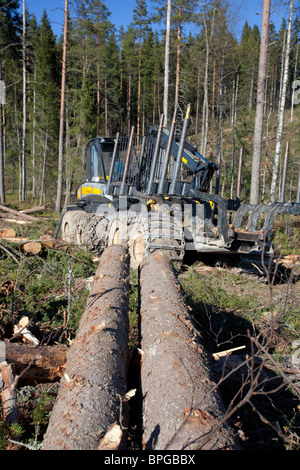 Ponsse Buffalo forwarder forest vehicle at clear-cutting area , Finland - Stock Photo