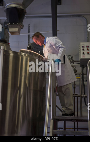 Scientist examining storage tanks in a brewery - Stock Photo