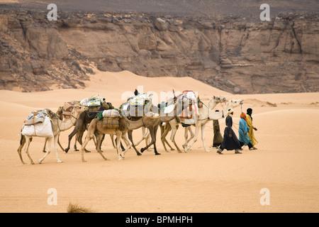 Camel Caravan in the libyan desert, Dromedaries, Camelus dromedarius, Akakus mountains, Libya, Sahara, North Africa - Stock Photo