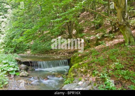 Small waterfall on Ighiel river in Alba County, Romania. - Stock Photo