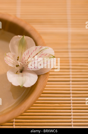 Peruvian lily (Alstromeria) in bowl of mud mask on bamboo mat - Stock Photo