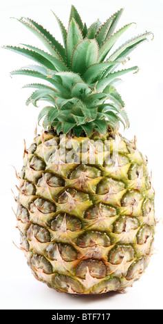 Large ripe pineapple with rich green rosette. Isolated on a white. - Stock Photo