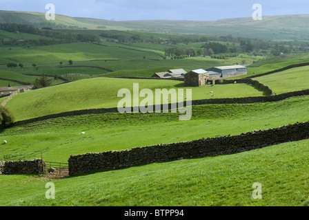 England, North Yorkshire, Wensleydale, View of barn and fields near Aysgarth - Stock Photo