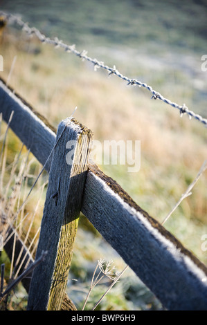 Light snow on wooden fence and barbed wire - Stock Photo
