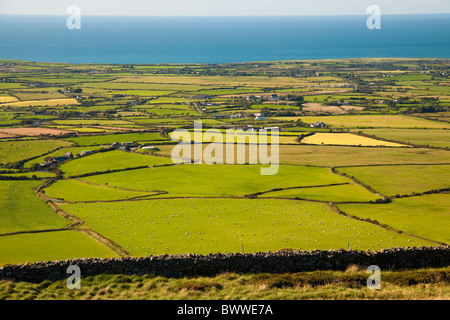 View from Mynnyd Rhiw across the Llyn peninsula looking North West across fields to the sea. Sheep visible in patchwork - Stock Photo