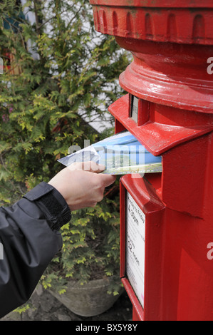 Posting postcards into a traditional red letter box - Stock Photo