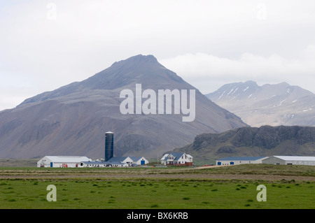 Farm, South coast near Hofn, Iceland, Polar Regions - Stock Photo