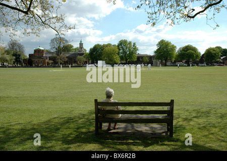 Lady watching cricket match, Kew, West London, England, UK - Stock Photo
