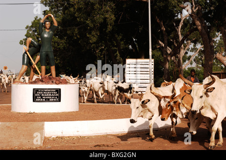 Cow herd passing a monument in commemoration of  the died laborers building the Barrage de Markala, 40 km north - Stock Photo
