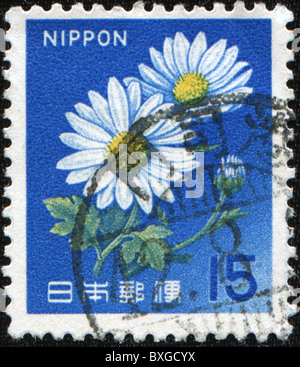 JAPAN - CIRCA 1960s: A stamp printed in Japan shows camomile, circa 1960s - Stock Photo