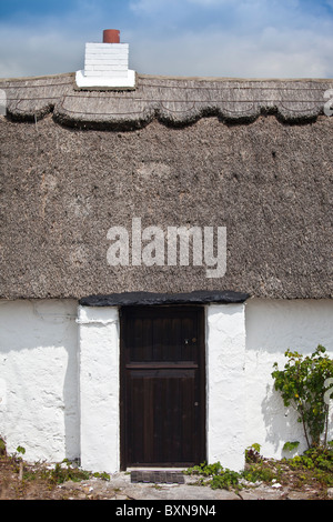 Newly whitewashed and renovated thatched cottage near Fethard-on-Sea, County Wexford, Southern Ireland - Stock Photo